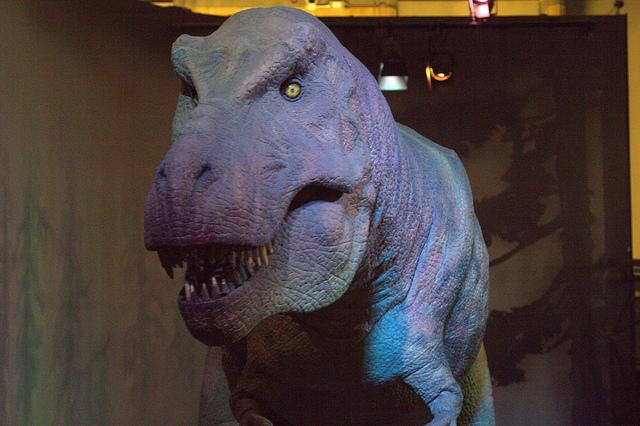 museo de historia natural londres con niños