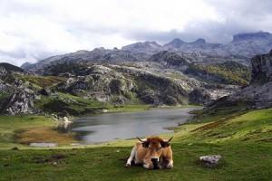 viajar a Asturias con niños 2013- Lagos de Covadonga