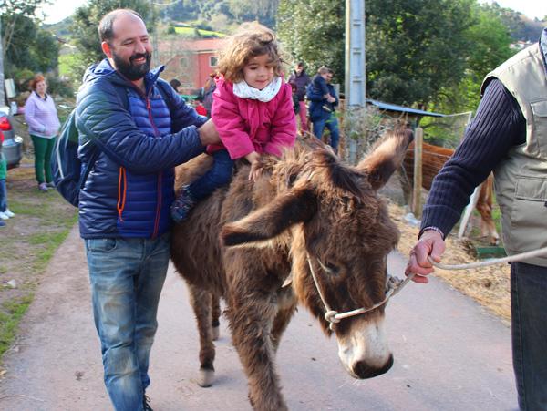 granja-conlleu-burro Asturias con niños