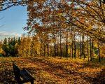 Destinos internacionales para escaparse en otoño