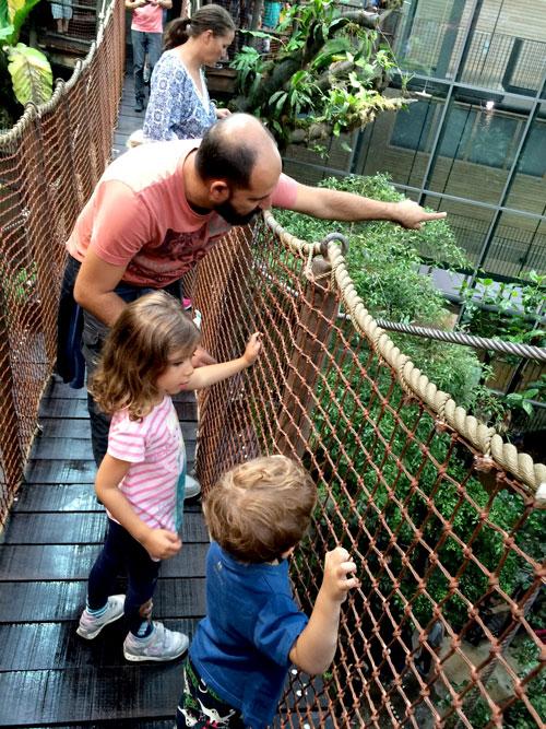 universeum selva gotemburgo con niños