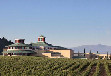 Enoturismo con niños en La Rioja