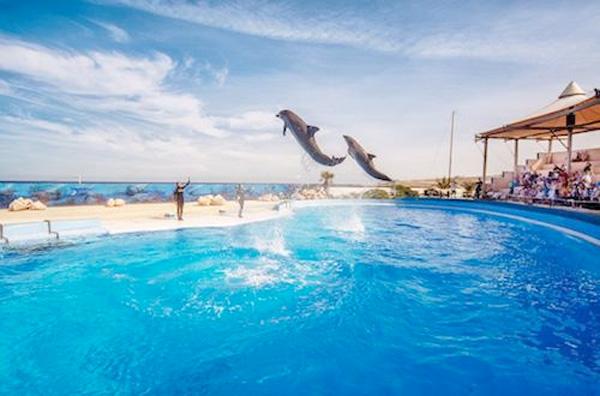 Malta con niños Parque maritimo del Mediterraneo