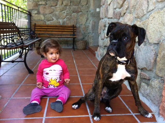 viajar como house sitter con niños