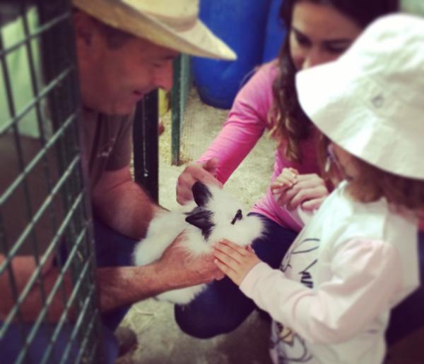 granja con niños