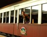 Kuranda Scenic Railway: El tren al edén australiano