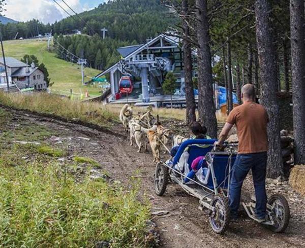 mushing Andorra con niños