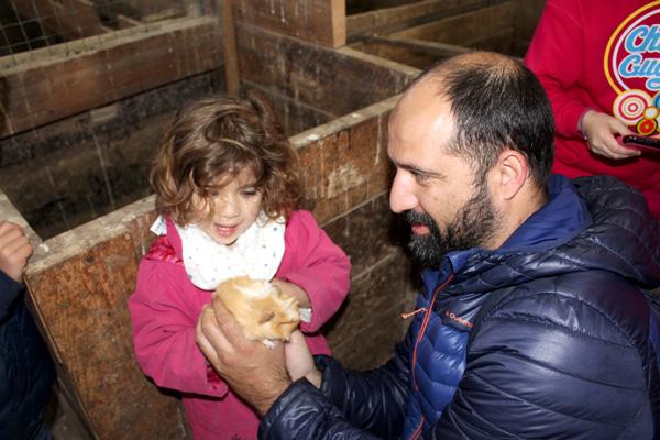 granja-conlleu-cobaya Asturias con niños