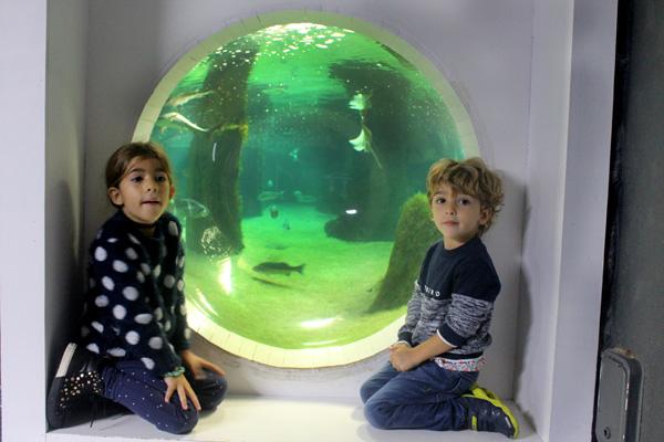 acuario O Grove Galicia con niños Rias Baixas
