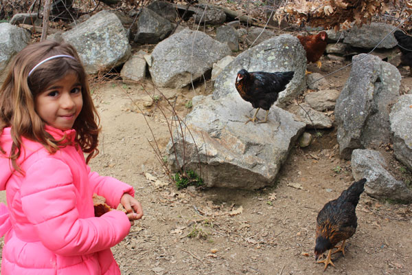 visita Granja Rio Pradillo central de reservas Sierra del Guadarrama