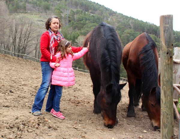 caballos Granja Rio Pradillo