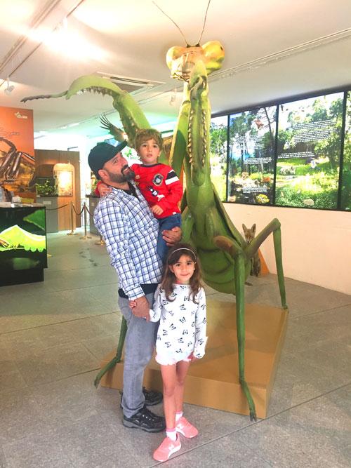 mantis insect park Sierra del guadarrama