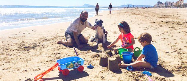 Qué hacer en vacaciones con tus mascotas