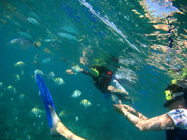 snorkel el Caribe con niños