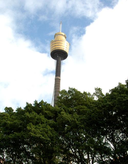 torre de sidney con niños
