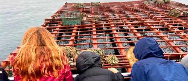 Excursión por la Ría de Arousa:    El Barco de los Mejillones